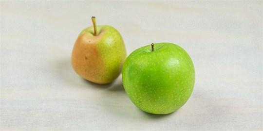 Piece of Fruit
