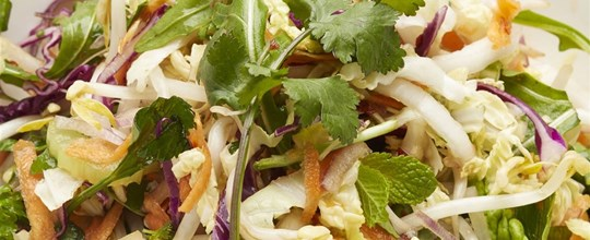 Asian style coleslaw V
