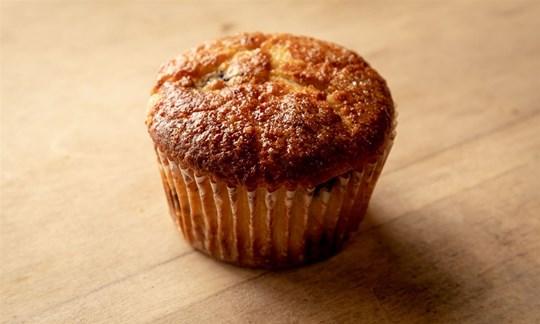 Blueberry & Ricotta Muffin