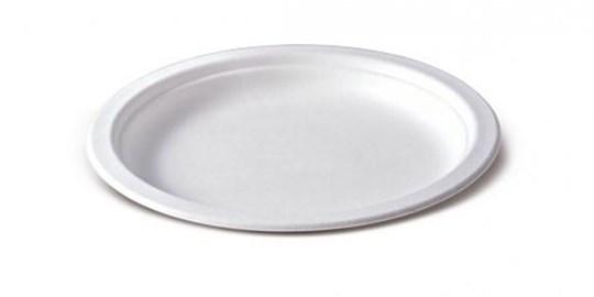 Disposable - Large Sugarcane Plate