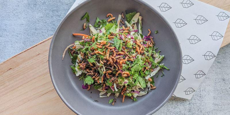 Crunchy Asian Slaw - Pail