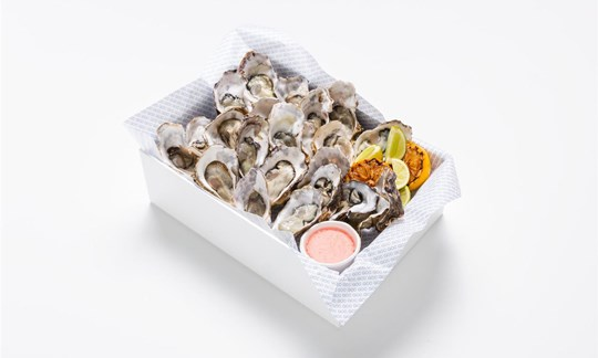 Oysters, shallot vinegar, citrus