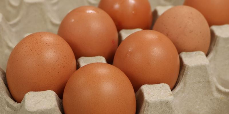 Eggs x 6