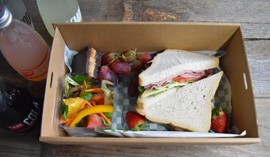 Gluten Free Sandwich Lunch Box 2 (AV, AD)