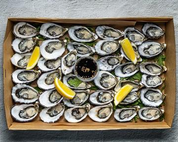 Oysters Freshly Shucked