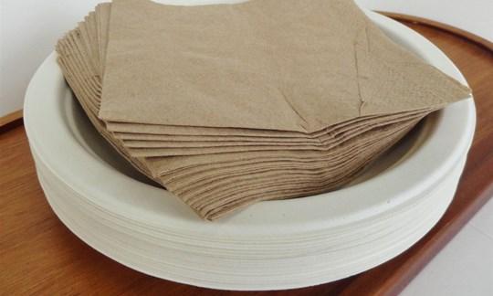 Small plates and napkins - compostable
