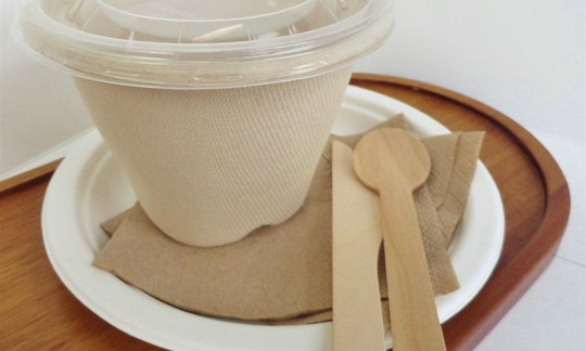 Bowls, spoons, plates, knives and napkins for soup- compostable