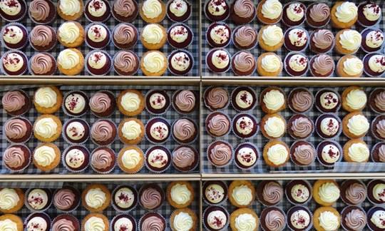 Mixed cupcake box- large