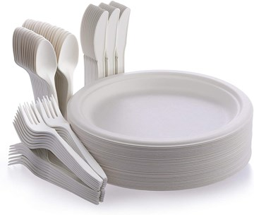 Disposable ECO Friendly Cutlery and Plate Set