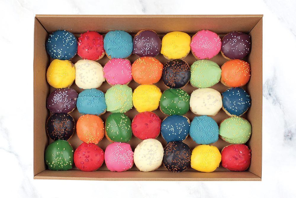 Vivid Medium Mini Doughnut Collection